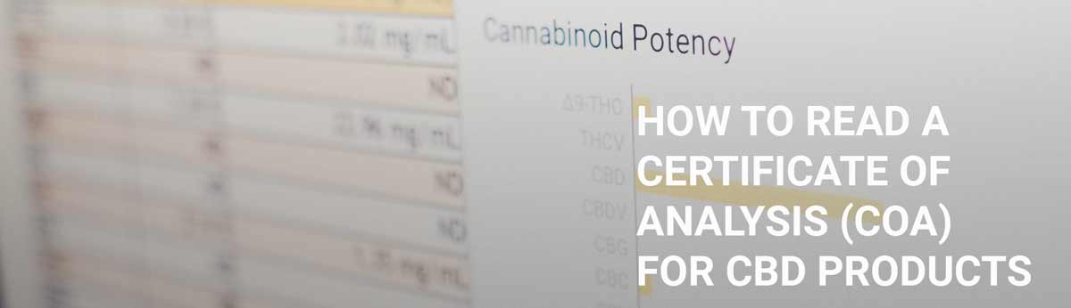How to read a certificate of analysis (COA) for CBD Products Hero Image