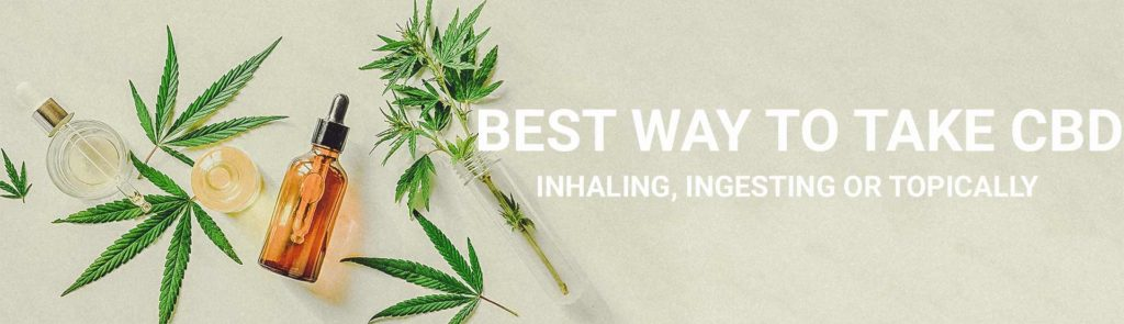 What is the best way to take CBD? Inhaling, ingesting, or topically? Hero image