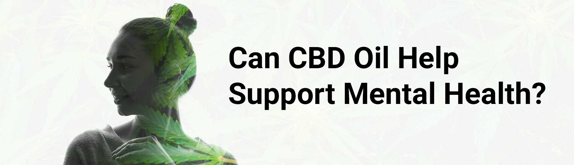 Can CBD Oil Help Support My Mental Health - Banner Image