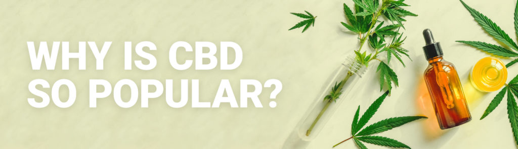 Why is CBD so popular? Hero Image