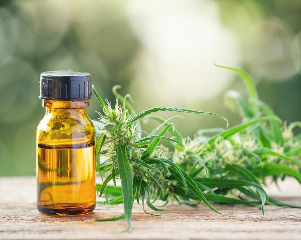 Image of CBD oil bottle and hemp flower